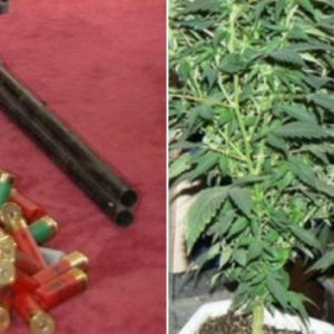 Незаконни боеприпаси и наркотици в Трънско