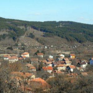 Земетресение разклати Брезнишко